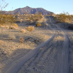 Day 1: Baker to east side of Devil's Playground, northwest of Old Dad Mountain, by bicycle, Mojave National Preserve