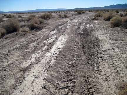 I hike across Crucero Road near Broadwell Dry Lake, surprised that it's rougher than I thought