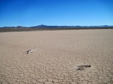 I continue my walk across Broadwell Dry Lake toward the Bristol Mountains