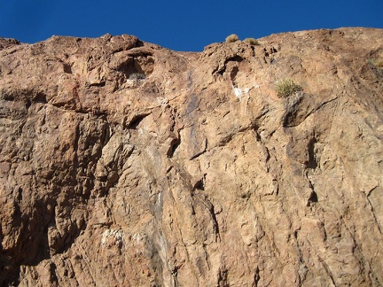 Birds use these two cavelets high up in the rock wall, and one of them is occupied by a nest