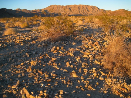 The Bristol Mountains behind me pick up the gorgeous gold of sunset as I hike down the rocky fan toward Broadwell Dry Lake
