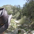 Here I am starting up Cottonwood Canyon at the base of the New York Mountains, Mojave National Preserve