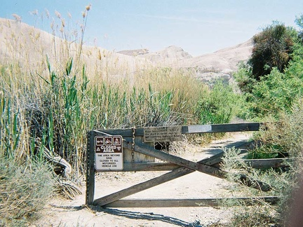 I begin a long walk down the Amargosa River