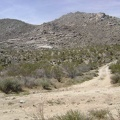 1/3 mile up the main road, I turn down the short road that dead-ends at Coyote Springs