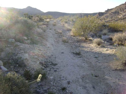 The old road toward Coyote Springs rises up a low hill