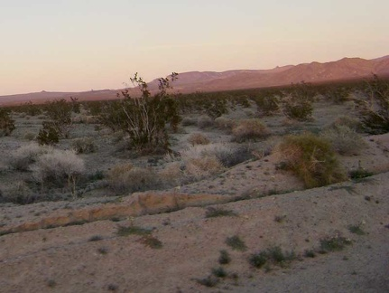 Today's Mojave National Preserve festival of pink, purple and orange is probably the best I've experienced on this trip