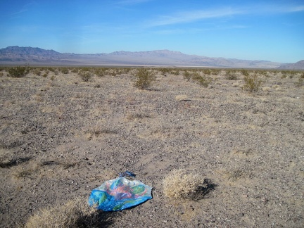Oh, another lost balloon in a wilderness area...