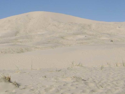 There are a number of people hiking Kelso Dunes today