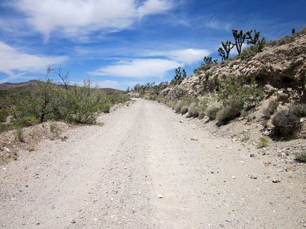 Hart Mine Road is a rough dirt road that rises about 250 feet in 2.5 miles on my detour route via Barnwell