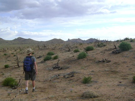 I head southwest across the burned Mid Hills plateau back toward the campground, with Eagle Rocks in the distance