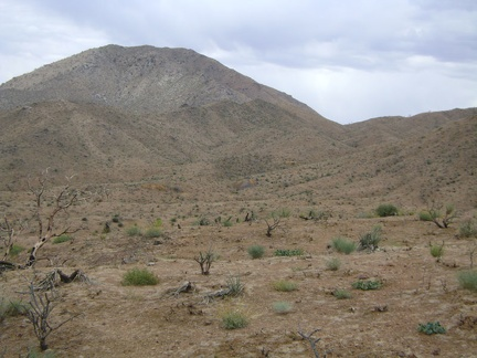 I decide to head over to the remnants of the Columbia Mine, those small orangish mounds in the distance