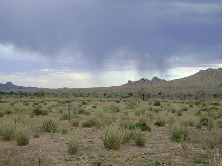 As I get closer to Mid Hills campground, the dark clouds weaken, but a few raindrops fall
