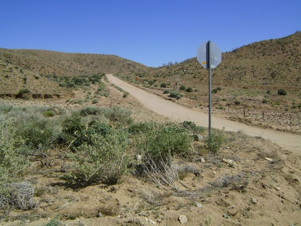 Black Canyon Road rises up from Cedar Canyon Road toward the Mid Hills, Mojave National Preserve