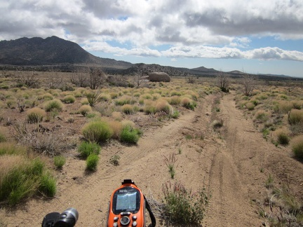 I leave my Pinto Valley campsite at 5650 feet elevation and start coasting down Howe Spring Road around 9h