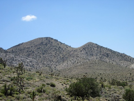 On the west side of Ivanpah Road, I can see roads leading up the hillsides in the Slaughterhouse Spring area
