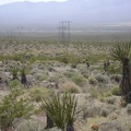 Now the dust trails from the dirt bikes are soaring across the Ivanpah Valley below