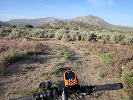 My favourite part of the ride back to camp is passing through Pinto Valley's sagebrush patches