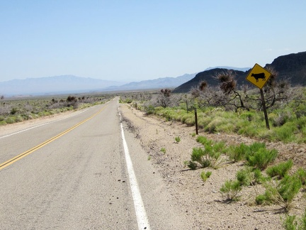 I ride a few hundred feet on pavement on Black Canyon Road before turning off toward Saddle Horse Canyon