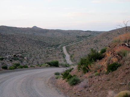 Wild Horse Canyon Road dips down into the upper part of Macedonia Canyon as I ride back to Mid Hills campground