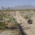 Looking back at a wash crossing that the 10-ton bike and I just walked through on the road to Coyote Springs