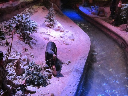 Also inside the Primm shopping-casino complex is a fake stream with fake wildlife