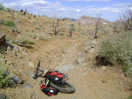 I make it back to Bluejay Mine, retrieve the bike, and start riding the 1.5 miles down to Wild Horse Canyon Road